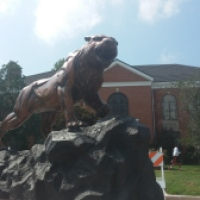 McKendree University Welcomes Bearcat Statue