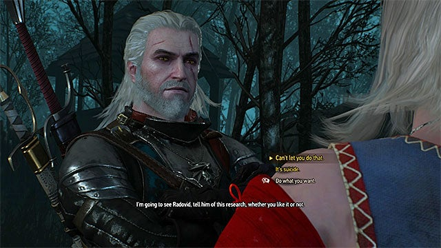 witcher ethics