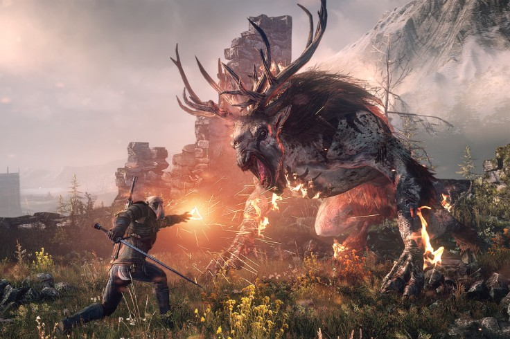 witcher game play 3